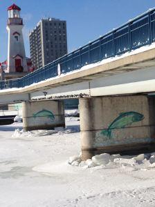 Pigeons under the bridge