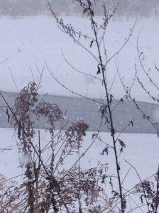 14-Proper winter 1