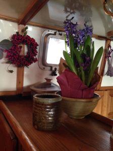 16--Hyacinths
