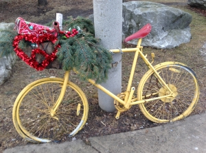 Confused bike